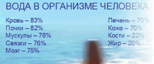 Вода и обмен веществ